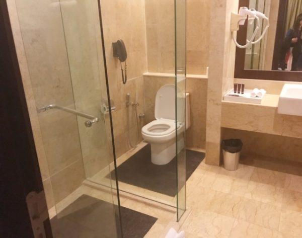マレーシア 水上コテージトイレ1