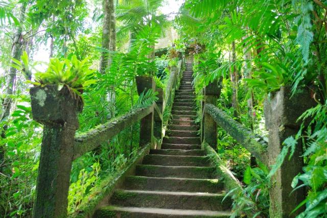 パロネラパーク自然の遺跡