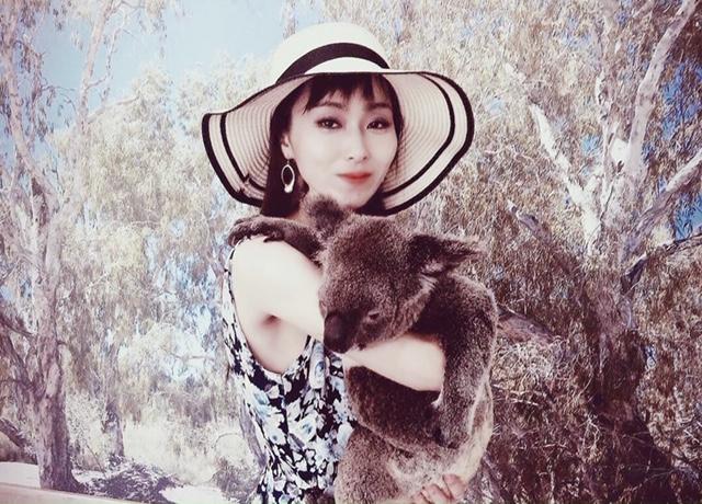 コアラ抱っこ2