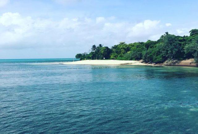 ケアンズ グリーン島