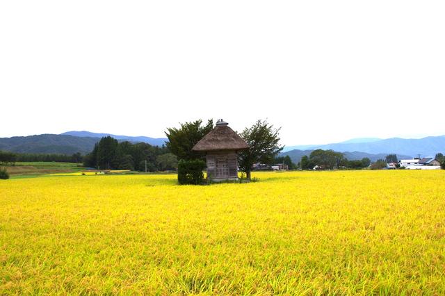 pixta_荒神神社春